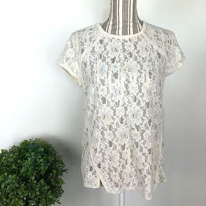 Zara Basic Large white lace short sleeve blouse